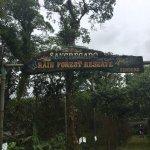 Foto de Arenal Lodge
