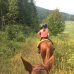 Photo of Vavenby Trail Rides