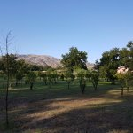Agriturismo Terrenia Foto