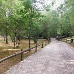 Photo de Parque Cerdeira