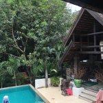 Rainforest Boutique Foto