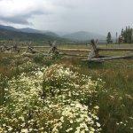 Devil's Thumb Ranch Resort & Spa-billede
