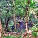 Cenote Xtoloc, próximo ao Observatório