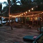 Foto The Firefly Bocas del Toro