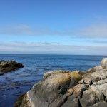 Coastal view (lots of boats today)