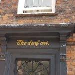 The deaf cat
