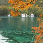Photo de Jiuzhaigou Natural Reserve
