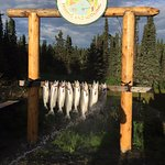 Alaska Fishing & Lodging Photo