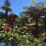 Photo de Monte Palace Tropical Garden