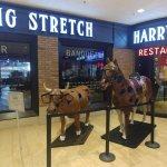 Harry Carey's Seventh Inning Stretch