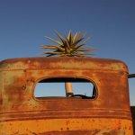 Photo of Canyon Roadhouse
