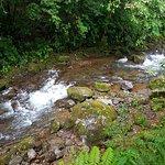 Foto de El Silencio Lodge & Spa