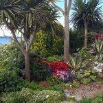 Gardens on esplanade