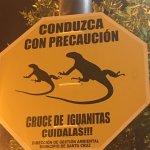 Foto de Galapagos Alternative