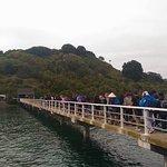 Photo de Tiritiri Matangi Island