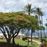 Grand Wailea - A Waldorf Astoria Resort Foto
