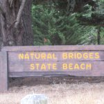 Natural Bridges State Beach, Santa Cruz, CA