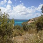 Foto de Villaggio Camping Porticello