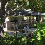 terrasse exterieure dans les arbres