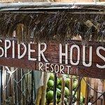 Spider House Resort Photo