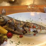 Foto di Odyssey Restaurant