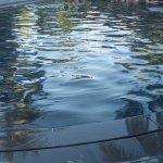 Hoi An Coco River Resort & Spa Photo