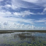 On the Everglades tour with AirBoat US