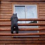 The Lodge at Jackson Hole Foto