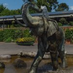 The Elephant spouts water, kids love this piece of art.