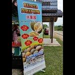 Malacca Durian Heng