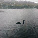 Foto de Cruise Loch Ness