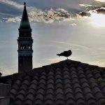 Foto de Hotel Firenze