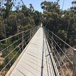 Photo of Spruce Street Footbridge