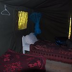 Photo of Rhino Tourist Camp