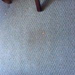 """""""clean"""" carpet"""