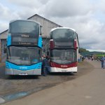 brand new lothian buses