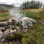 Natural hot spring on farm