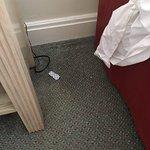 Litter on the floor