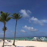 Indigo beach bar & lounge