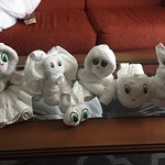 Towel animals that our room attendant left every day