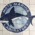 Mote Marine Laboratory and Aquarium Photo