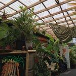 Foto de The Jungle Cafe