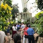 Foto de Conservatorio de Mariposas en las Cataratas del Niagara