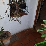 Photo de Casa Federico