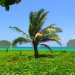 Paradise at Sandy Beach