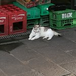 Photo of Kannawa Onsen