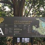 Photo de Royal Botanic Gardens Melbourne