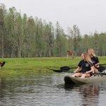 Cool off on the water on a kayak safari!