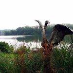 Lake Junaluska setting