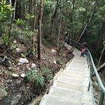 Photo de Le pont aérien de Langkawi